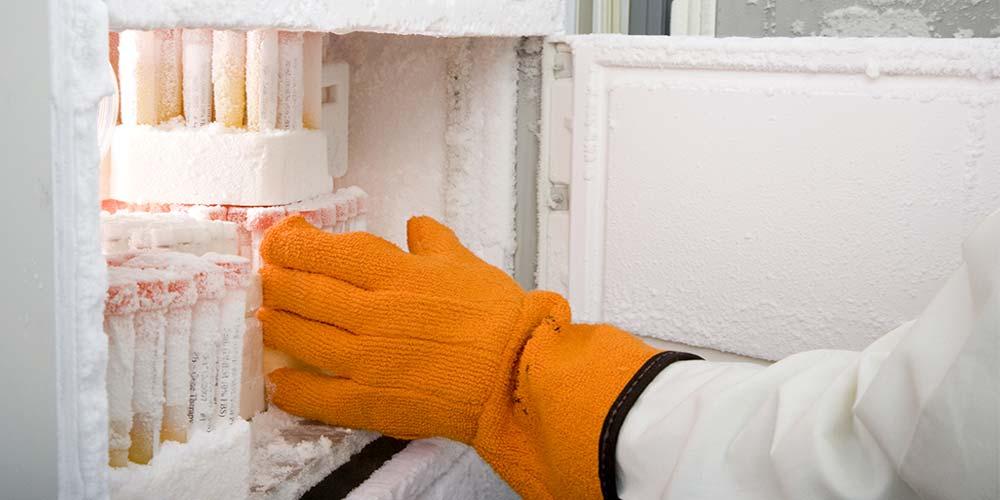 lab-freezer.jpg